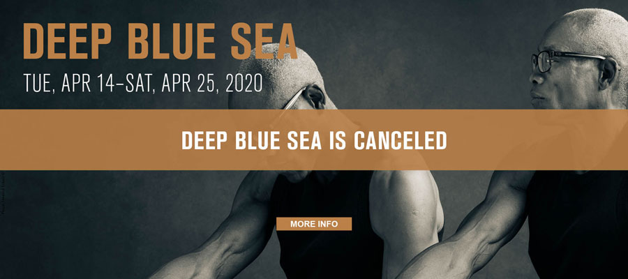 Deep Blue Sea is Canceled